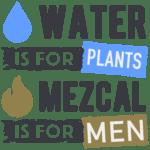mezcal-water